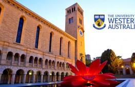 在世界第七宜居城市,读实力与颜值兼备的世界百强名校—西澳大学!