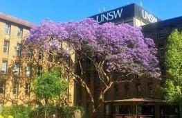 一年制?高起薪?可移民?世界五十强新南威尔士大学硕士课程超强科普!